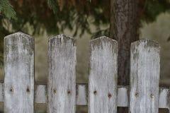 płotowi lata łąkowi słoneczniki drewniane Obraz Stock