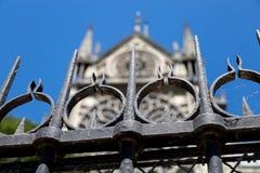 Płotowy Outside Notre Damae w 2015 fotografia royalty free
