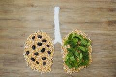 Płuco bolak należny środowiska zanieczyszczenia pojęcie Fotografia Royalty Free