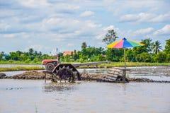 Pług maszyna - Chodzący ciągnik na ryżu polu dla praca pługu, pług obraz royalty free