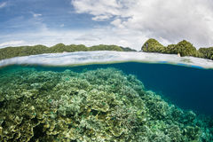 Płytka rafa koralowa i wyspy Zdjęcia Royalty Free