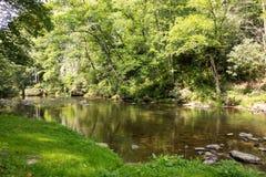Płytka rzeka otaczająca luksusowym ulistnieniem w appalachians zdjęcie royalty free
