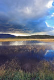 Płytki jezioro obraz stock