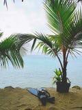 Pływać w lagunę zdjęcia royalty free