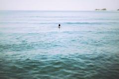 Pływać w morzu Obraz Royalty Free