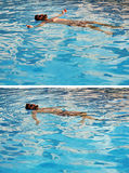 Pływać w słońcu Zdjęcie Royalty Free