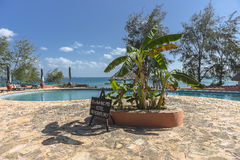 Pływackiego basenu hotel w kurorcie na Więźniarskiej wyspie zdjęcie royalty free