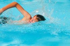 pływaczek potomstwa Zdjęcie Royalty Free