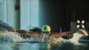 Pływaczka obraz royalty free