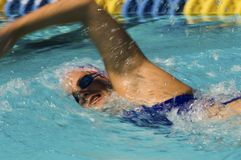 Pływaczki mknięcie Przez wody Podczas rasy Fotografia Stock