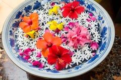 pływający kwiat Obrazy Royalty Free
