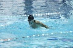 Pływanie basen Zdjęcia Royalty Free