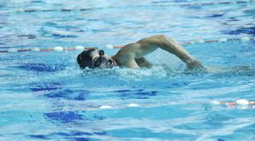 Pływanie basen obrazy royalty free