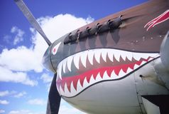 P-40 Warhawk stock photography
