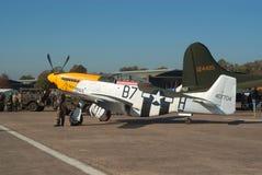 P-51  Stock Image