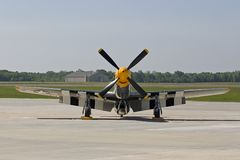 P-51 at MgGuire AFB. The P-51 Bald Eagle at McGuire AFB Stock Images