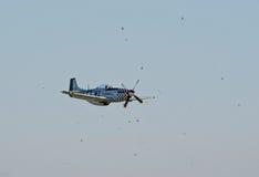 P-51 mustang die door vogels wordt omringd Stock Afbeelding