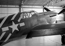 P-51A Stock Image