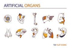Płaskie ikony - sztuczni organy 3 Obrazy Royalty Free