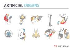 Płaskie ikony - sztuczni organy 4 Obrazy Royalty Free