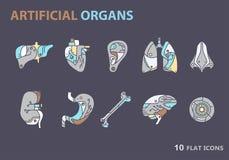 Płaskie ikony - sztuczni organy 7 Zdjęcie Royalty Free