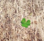 Płatek koniczyna na starym drewnianym tle St Patricks dnia zieleni shamrock Fotografia Stock