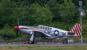 P-51 C野马 图库摄影