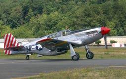 P-51 C野马 免版税库存图片