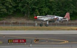 P-51 C野马 免版税图库摄影