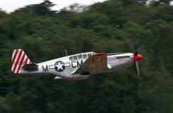 P-51 C野马 库存图片