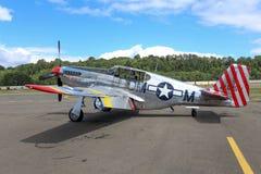P-51 C野马 库存照片