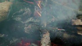 P?on?ca ?upka w graby zbli?eniu Płomień i dym w ognisku zdjęcie wideo