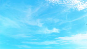 1080p CGI sky with white clouds and birds flight Royalty Free Stock Photo