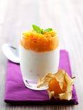 pęcherzyca kremowy jogurt Zdjęcia Royalty Free