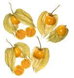 Pęcherzycy pęcherzycy owocowy peruviana Fotografia Stock