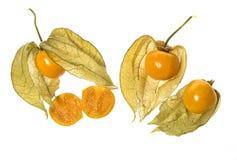 Pęcherzycy pęcherzycy owocowy peruviana Obrazy Royalty Free