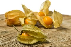 Pęcherzycy pęcherzycy owocowy peruviana Zdjęcia Stock