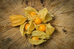 Pęcherzycy pęcherzycy owocowy peruviana Fotografia Royalty Free