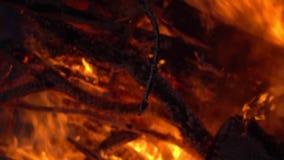 p?on?cy ogie? ognisko Zbli?enie p?omienie Pali na Czarnym tle, zwolnione tempo zdjęcie wideo