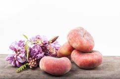 Pączek brzoskwinie Fotografia Stock