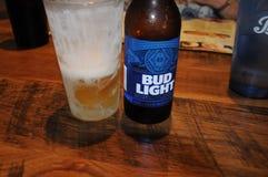 PĄCZKOWY LEKKI piwo Obraz Stock