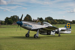 P51D Mustang Royalty Free Stock Images