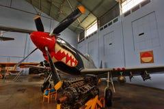 P-51D Mustang Royalty Free Stock Photos