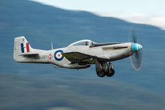 P-51D Mustang Royalty Free Stock Photo