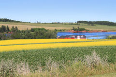P.E.I. summer landscape Royalty Free Stock Images