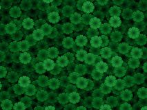 P Green Stock Photo