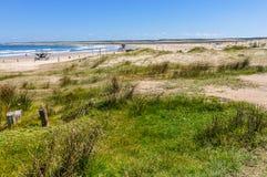 På kusten i Cabo Polonio, Uruguay Arkivbild
