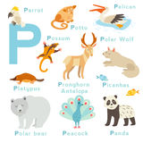 P letter animals set. English alphabet. Vector illustration Royalty Free Stock Photo