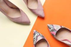 P?lido - rosa y zapatos femeninos de la impresi?n de la serpiente Zapatos del tacón alto de la mujer en fondo anaranjado y rosado fotos de archivo libres de regalías