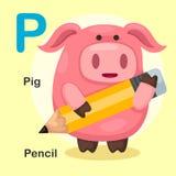 P-maiale animale della lettera di alfabeto dell'illustrazione, matita Fotografia Stock